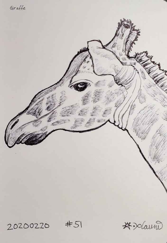 2020 Sketch of the day Number 50: Giraffe